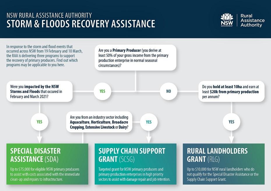 NSW Storms & Floods RAA Programs Flowchart
